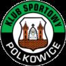 KS Gornik Polkowice