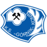 KS Gornik Konin