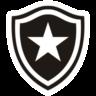 Botafogo RJ U20